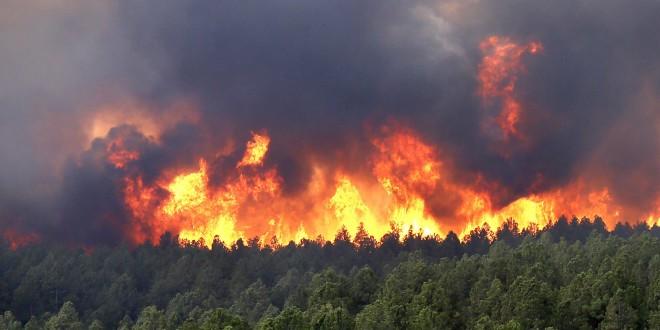 Правила пожарной безопасности в весенне-летний период