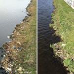 Ногайский район присоединился к акции «Чистые берега Евразии».