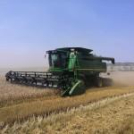 Во всех хозяйствах Ногайского района началась уборка зерновых культур.